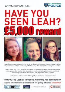 Find Leah Poster